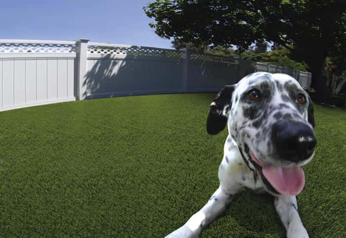Artificial lawn allergy free for pets - Great urine drainage