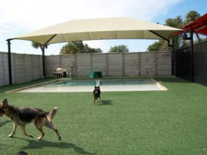 Pet Turf Care Facilities