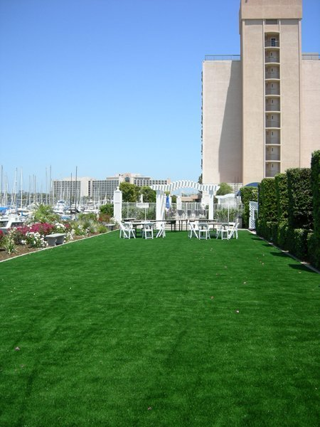 m367_Sheraton-Harbor-Island-Resort - Just Like Grass